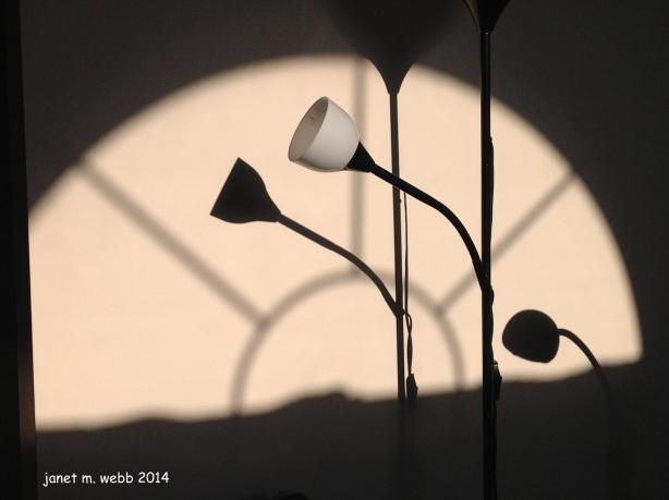 photo(144)