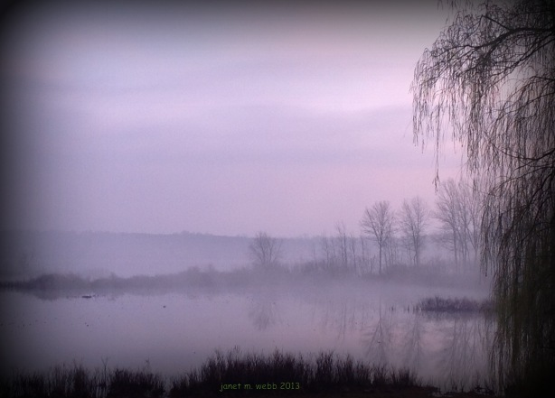 A misty morning on the lake outside our daughter's house
