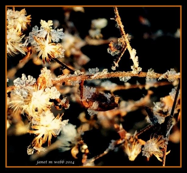 photo 2(137)-001