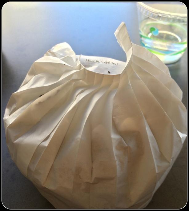 Portabella mushroom burger wrapper