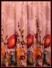 My shower curtain (no peeking!)