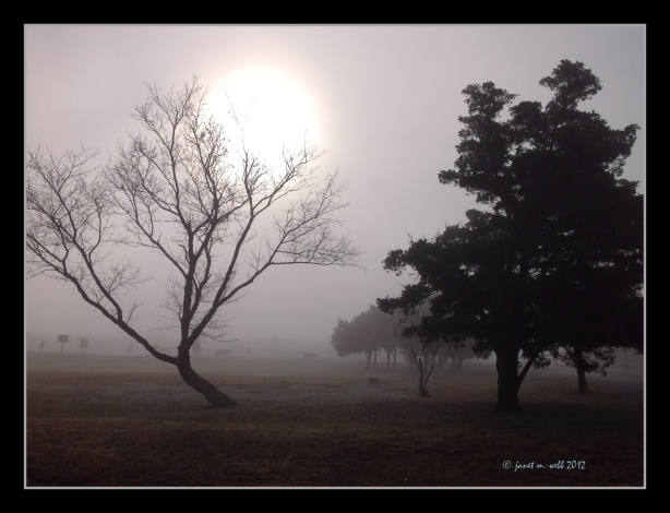 © janet m. webb 2012
